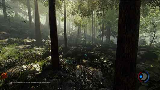The Forest Update 017