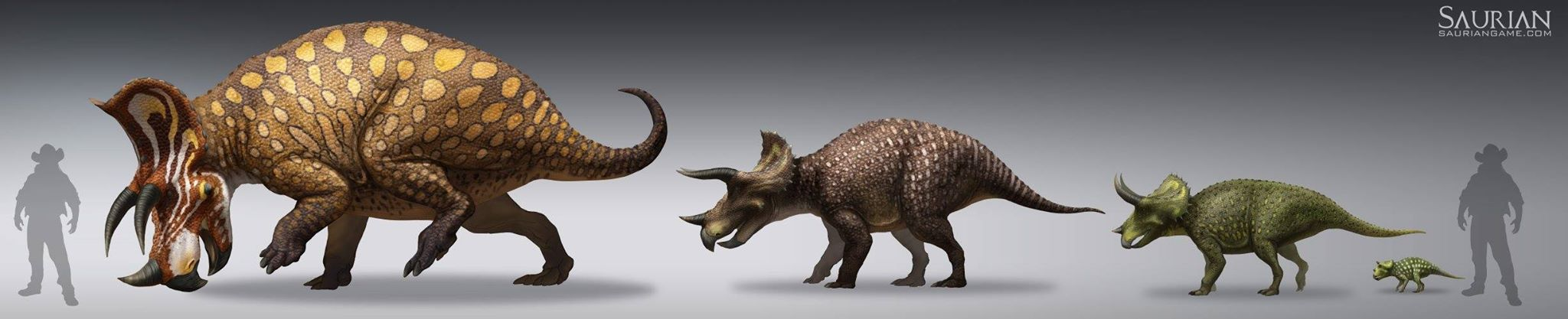 Growing-Stages of a Triceratops