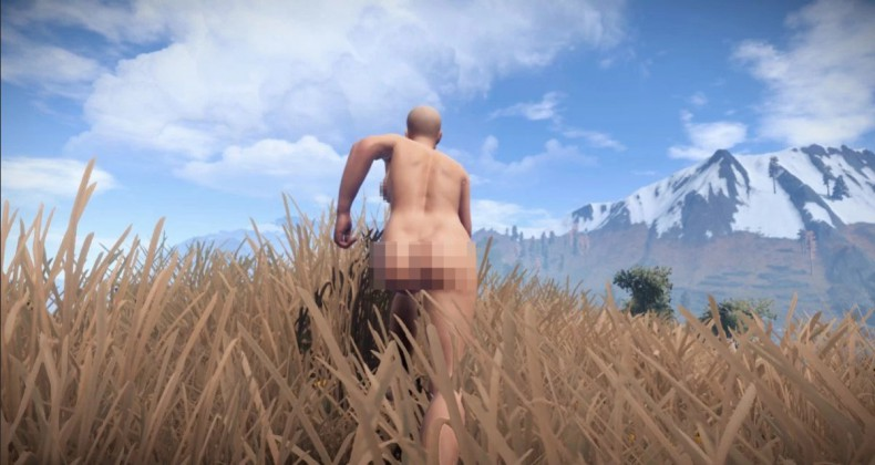 Rust Female Ass