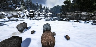 ARK Survival Evolved Primal Survive