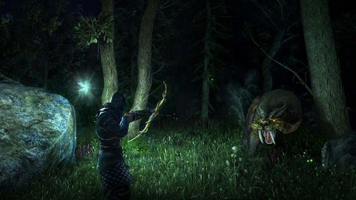 Hunting during nighttime in Dark and Light