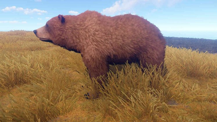 Rust reworked bear