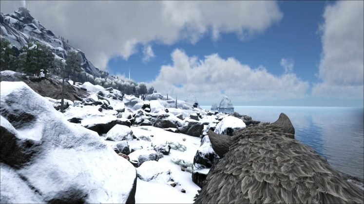 ARK Snow Biome