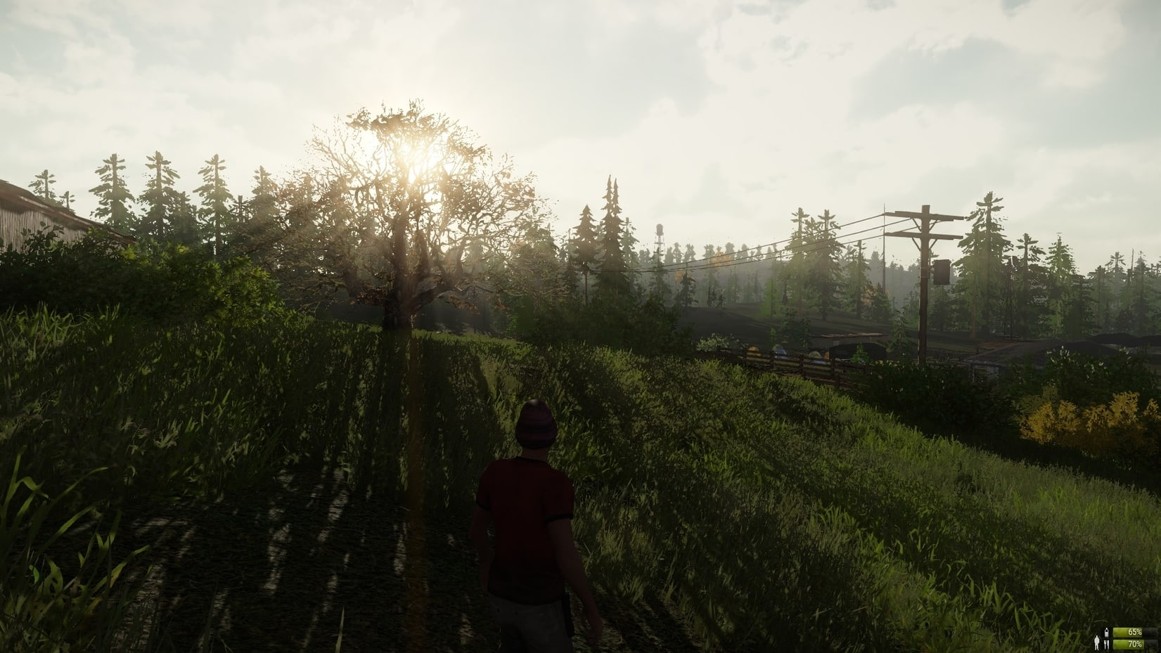 Miscreated Early Access Check