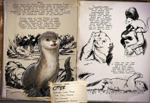ARK: Survival Evolved Dossier Otter