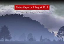 DayZ Statusreport vom 8. August