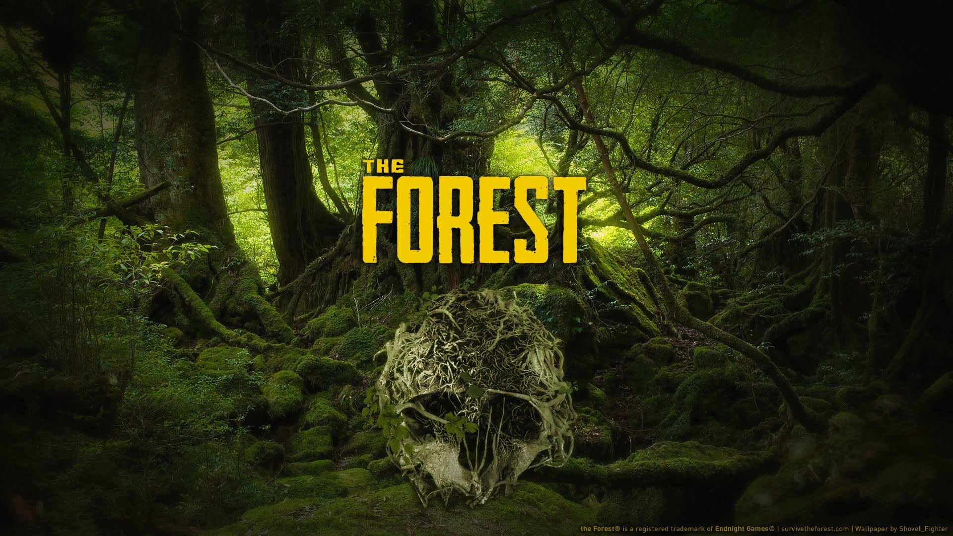 the forest spielstand