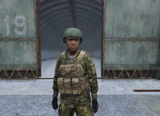 dayz 1.02 plate carrier + attachements