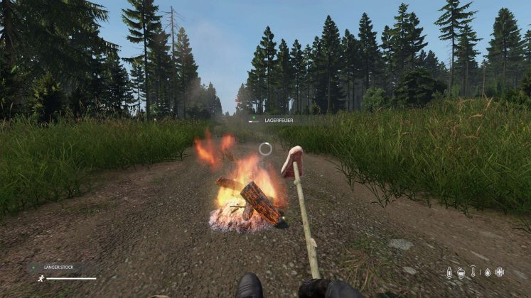 dayz kochen guide stick