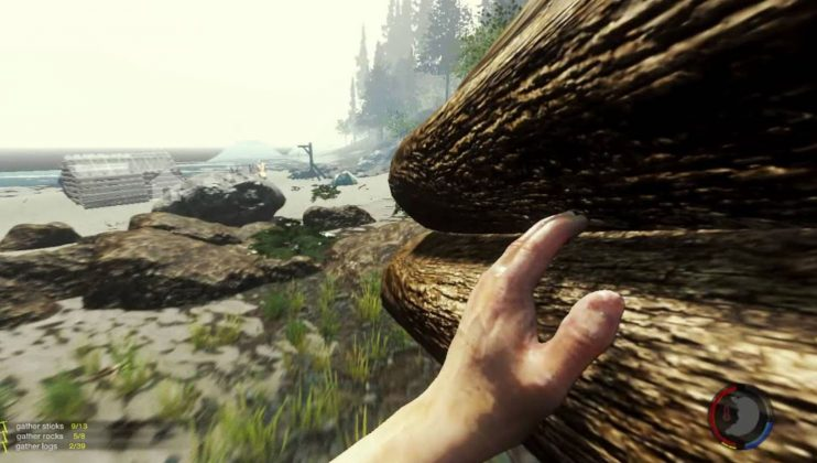the forest logs