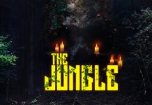the-jungle-game-copy-cat-header