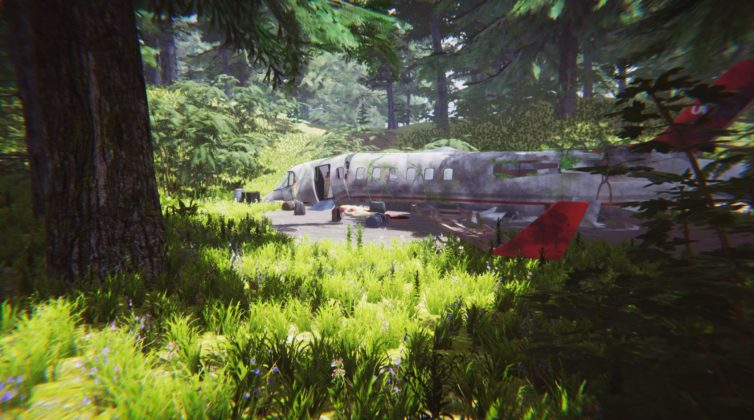 the jungle survival game the forest flugzeug kopie