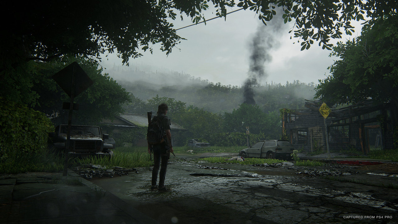 the last of us 2 fotomodus hillcrest